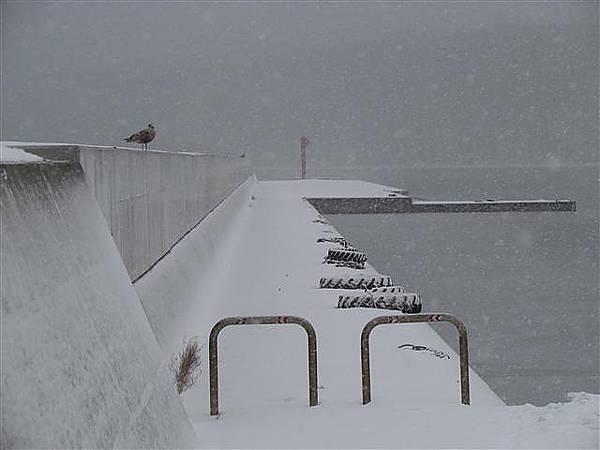 041_漁港.JPG