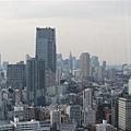 047_東京鐵塔.JPG