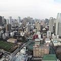 鐵塔俯瞰2.jpg
