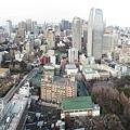 鐵塔俯瞰1.jpg