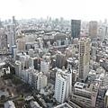 鐵塔俯瞰4.jpg