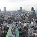 鐵塔俯瞰5.jpg
