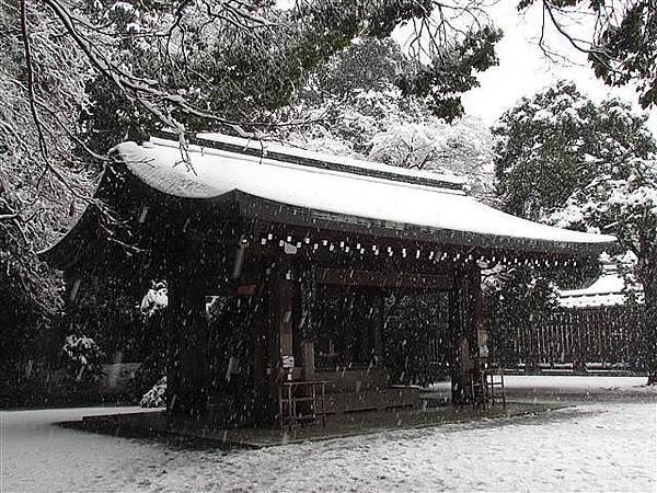 035_明治神宮.JPG