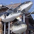 028_魚市場.JPG