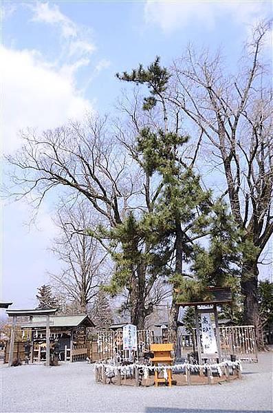 059_阿蘇神社.JPG