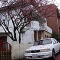 052_芝柏村.JPG
