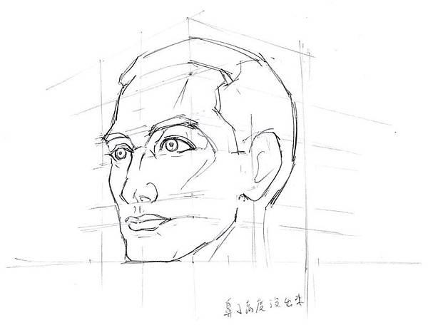 20140328_01頭骨與臉部五官配置.jpg