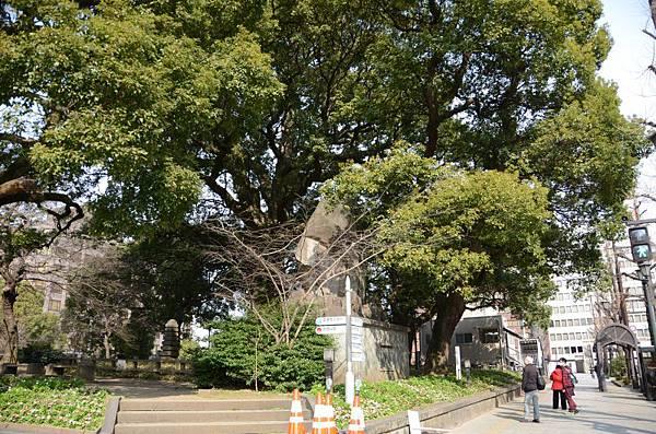 004_熊本市區.JPG