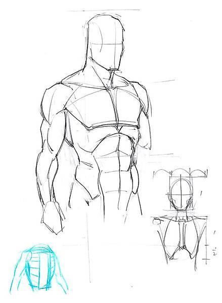 20161126_01人體上半身肌肉解構.jpg