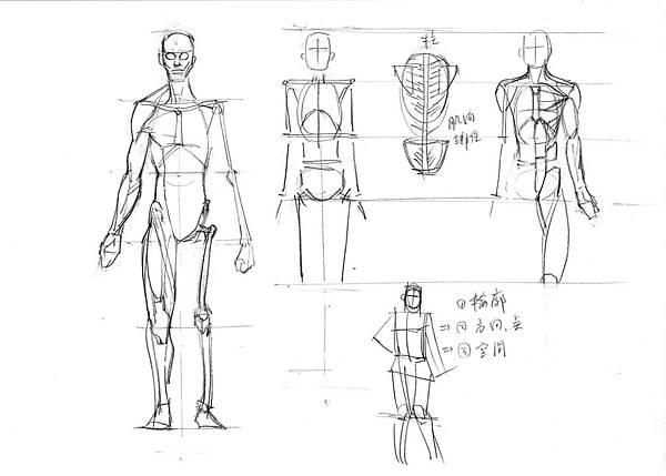 20161119_1人體肌肉的基本概念.jpg