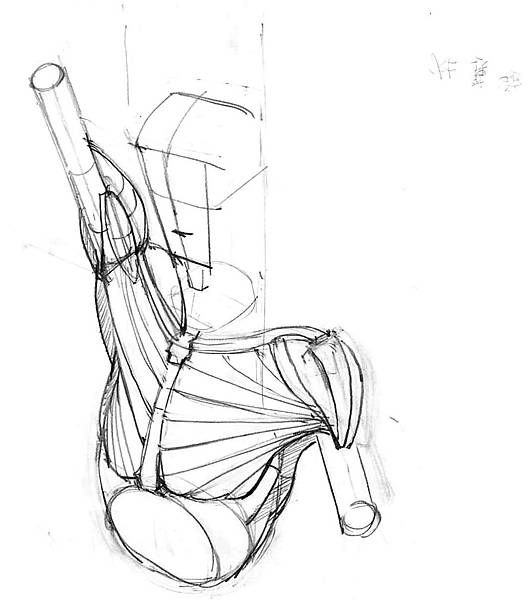 20170204_01斜方肌與三頭肌組合.jpg