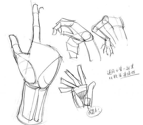 20170506_01手骨骼與肌肉認識.jpg