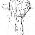 20110327_方塊與動物結合練習2.jpg