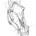 20110430_認識馬的頭部與應用練習2.jpg