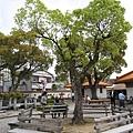 095_徐福公園.JPG