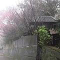 001_製茶體驗處.JPG