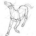 20110424_認識動物馬的肌肉練習2.jpg