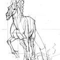 20110430_認識馬的頭部與應用練習3.jpg