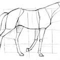 20110327_方塊與動物結合練習1.jpg