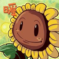 太陽花.jpg