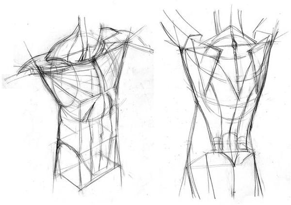 20100801_前鋸肌豎脊肌背闊肌練習1.jpg