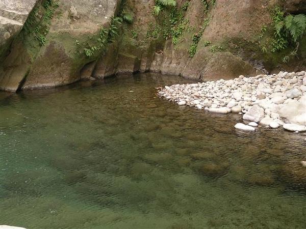 003_南庄蓬萊溪.JPG