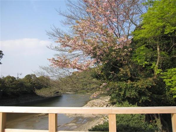 117_伊勢神宮.JPG