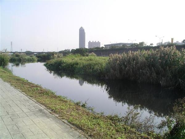 003_新海溼地.JPG