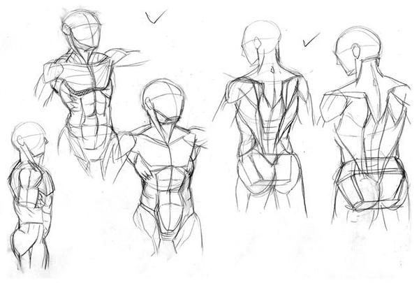 20100704﹍人體正背面結構練習1.jpg