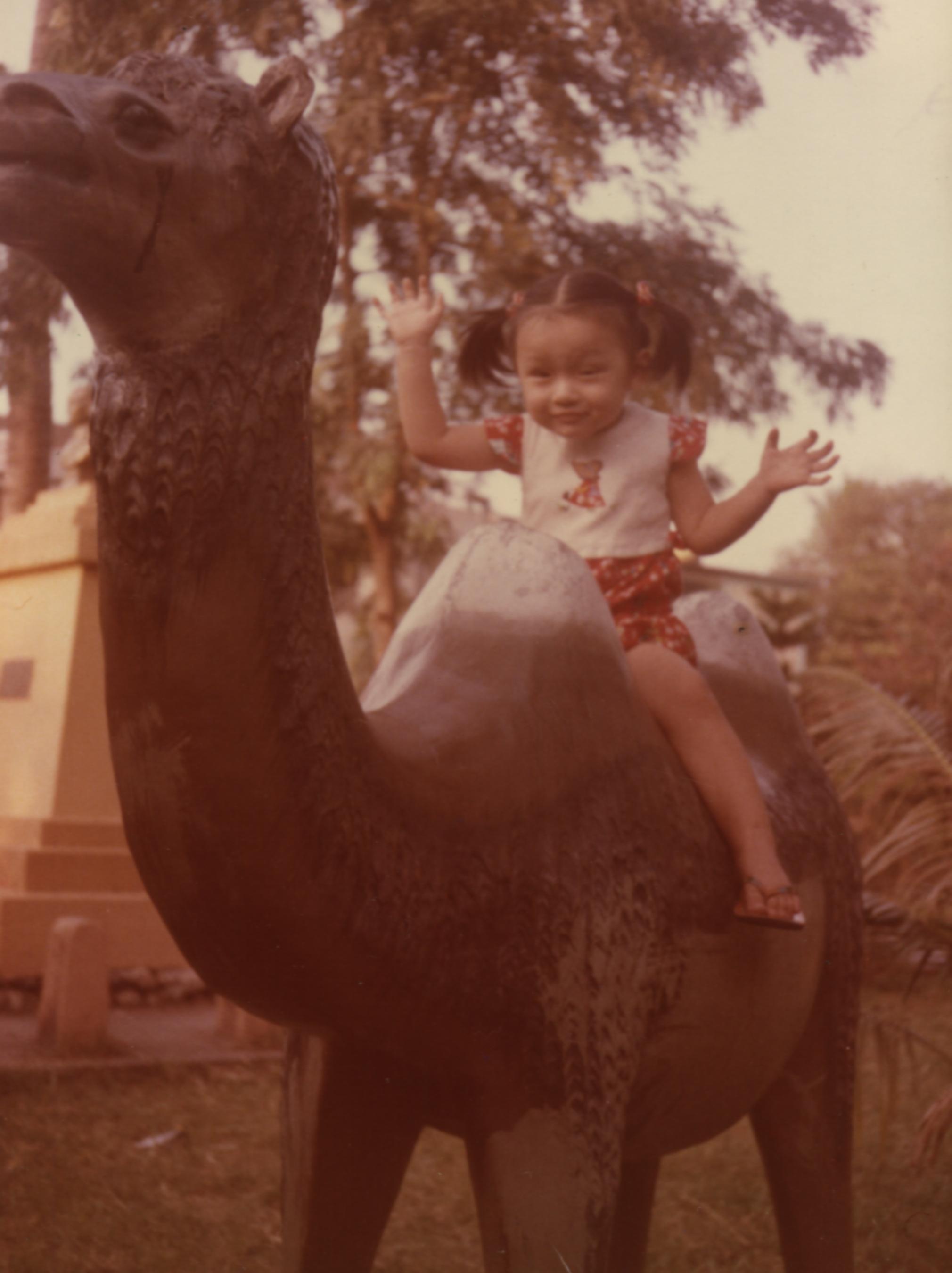 騎駱駝.jpg