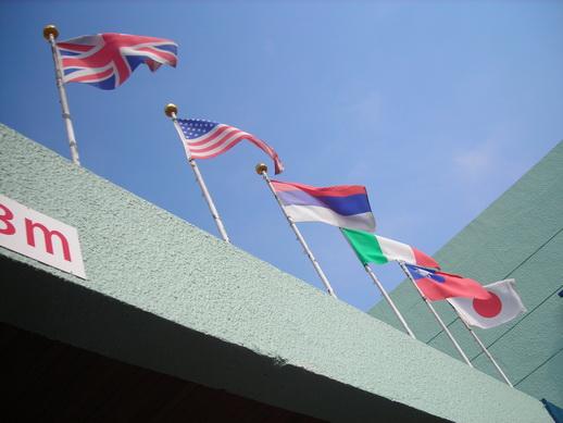 上面很多國旗