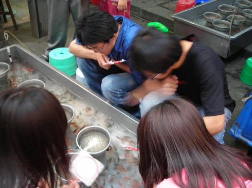 四個大學生在撈魚