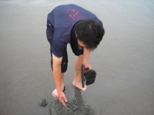 有螃蟹嗎?