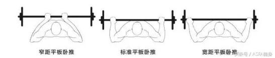【SuprtFIT雕塑身材系列】重訓握法大不同(上)