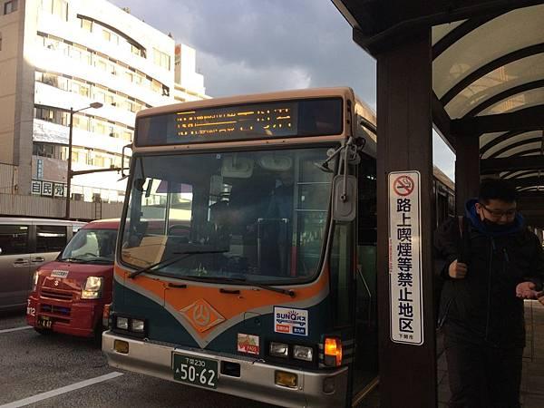 IMG_7859.JPG