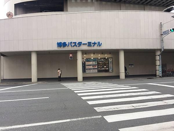 IMG_8030.JPG