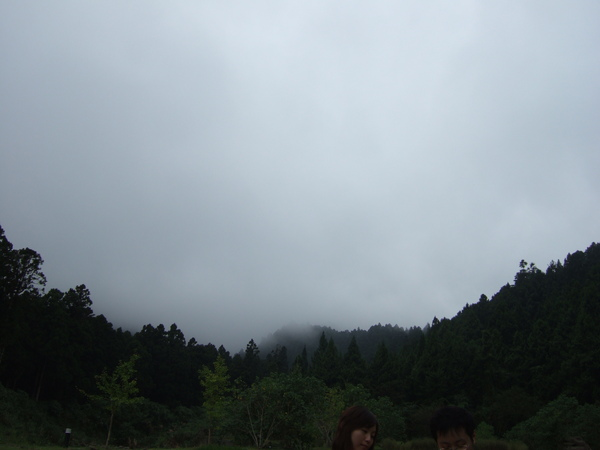 好重的霧氣