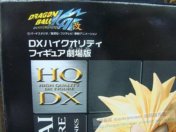 DSC03164 (複製)