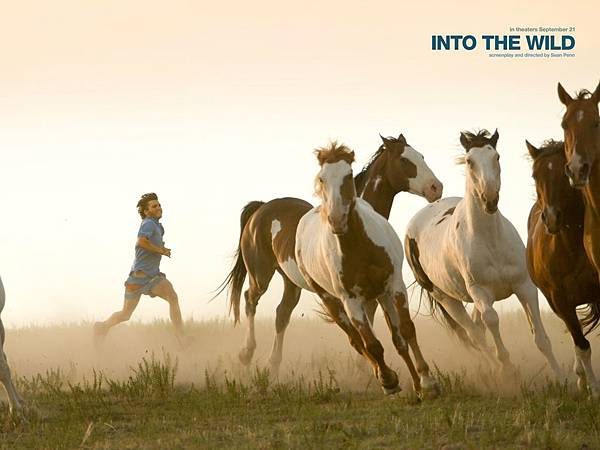 into-the-wild-horses-731087.jpg