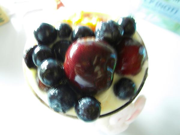 yogurt01-7.JPG