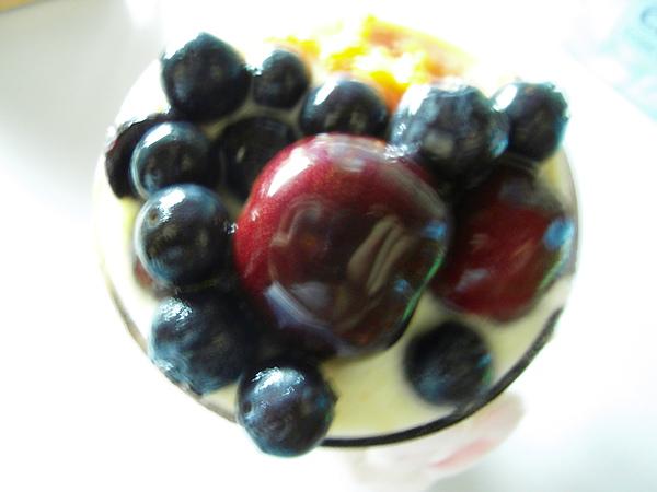 yogurt01-3.JPG