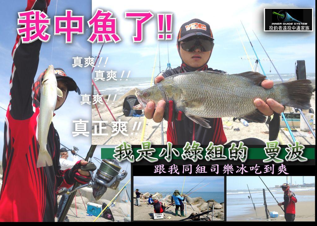 曼波 鱸魚