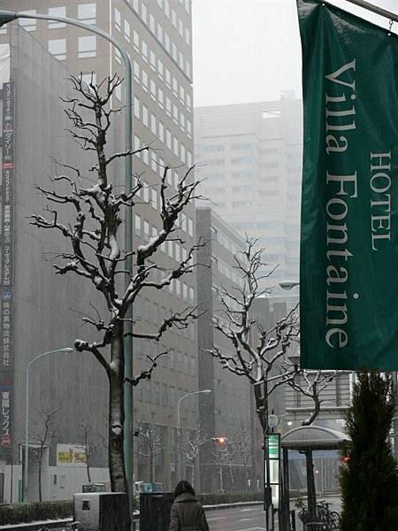 20080203 日本 (18).JPG