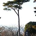 20080201 日本 (190).JPG