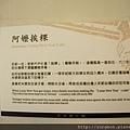 《台南》赤崁擔仔麵 (58).JPG