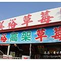 《台南》善化小新營草莓園 (1).JPG