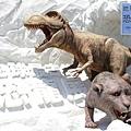 《台北》最古老的恐龍展 (1)