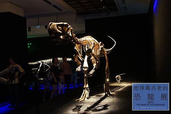 《台北》最古老的恐龍展 (7)