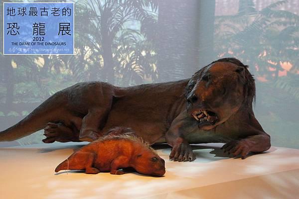 《台北》最古老的恐龍展 (21)