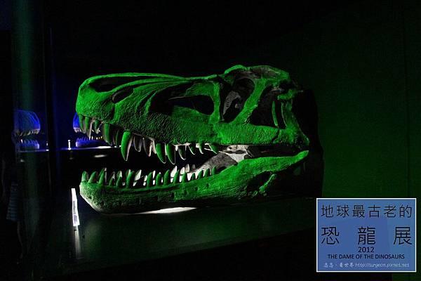 《台北》最古老的恐龍展 (27)